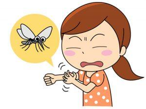 夜中に蚊がうるさい!寝るときの対策方法と蚊を駆除して侵入経路を防ぐ方法